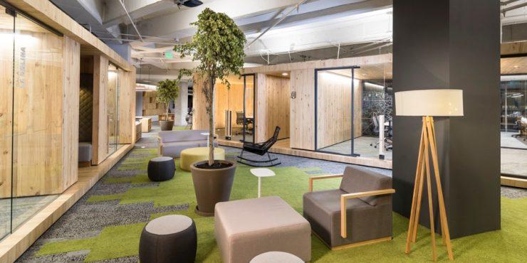 2018-05-Jupps-Eco-friendly-Business-set-ups